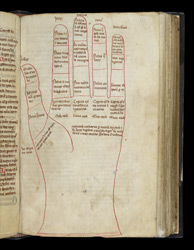 Drawing Of A Left Hand, In A Miscellany Of Texts In French
